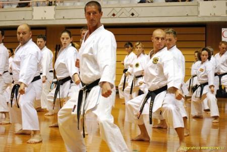 seminář Okinawského karate při turnaji