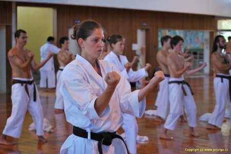 Petra Židková na technickém semináři na Okinawě