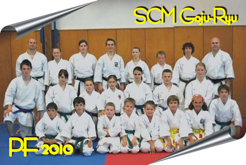 pf-scm-2010