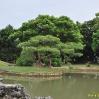09-08-28-okinawa-tokyo-1172