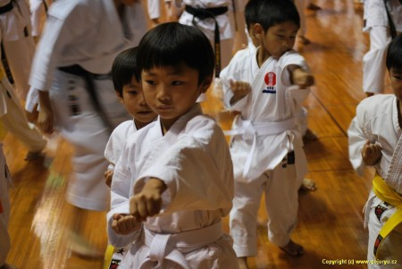 ti nejmenší z Ryuei-Ryu pod vedením T.Sakumoto